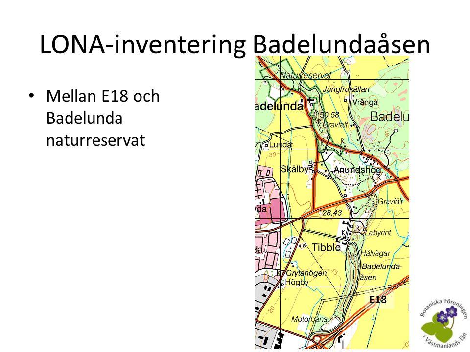 LONA-inventering Badelundaåsen