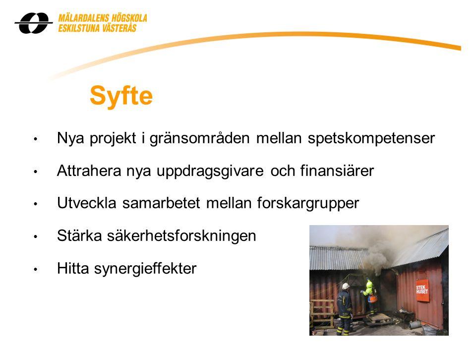 Syfte Nya projekt i gränsområden mellan spetskompetenser