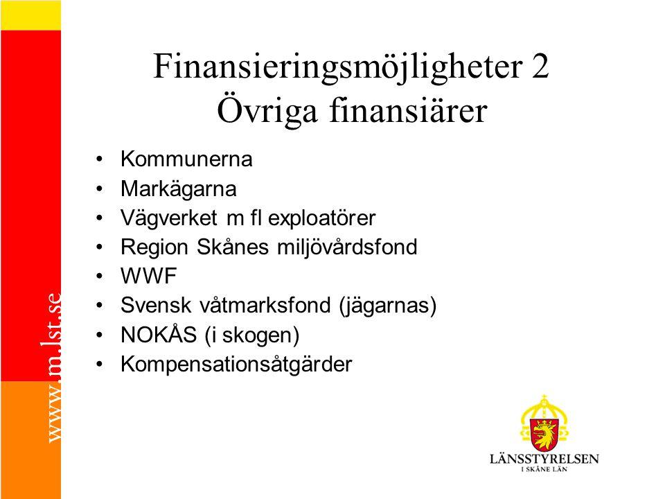 Finansieringsmöjligheter 2 Övriga finansiärer
