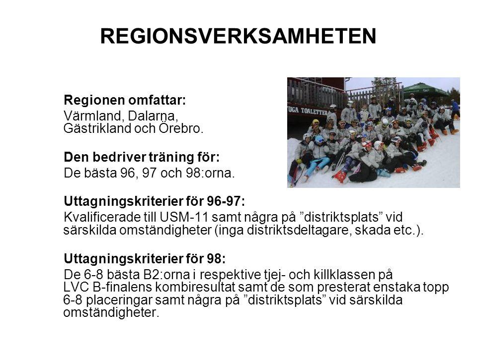 REGIONSVERKSAMHETEN Regionen omfattar: