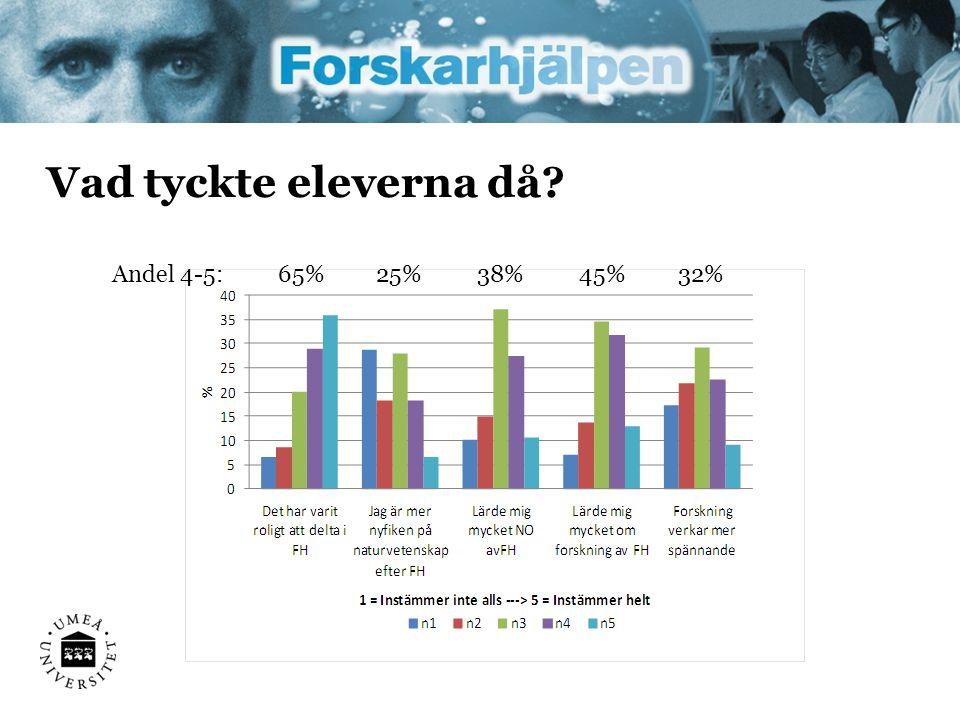 Vad tyckte eleverna då 65% Andel 4-5: 25% 38% 45% 32%