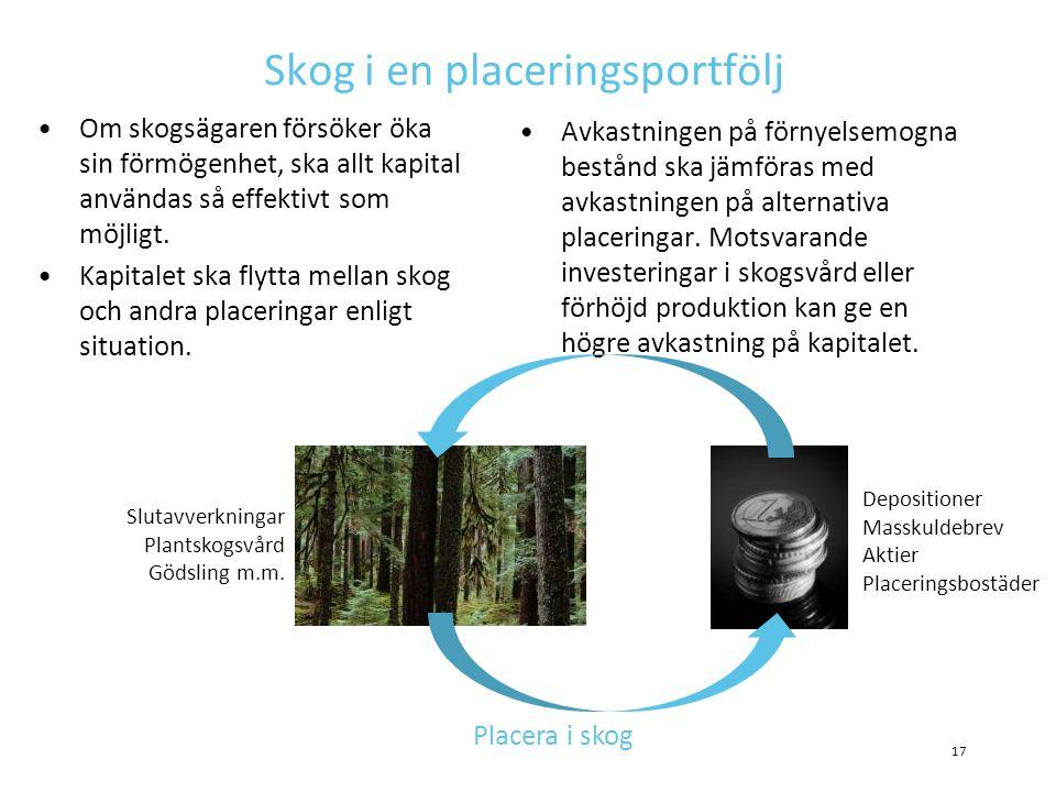 Skog i en placeringsportfölj