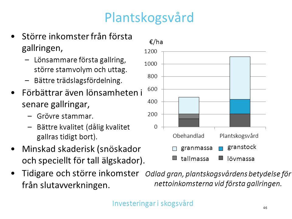 Investeringar i skogsvård