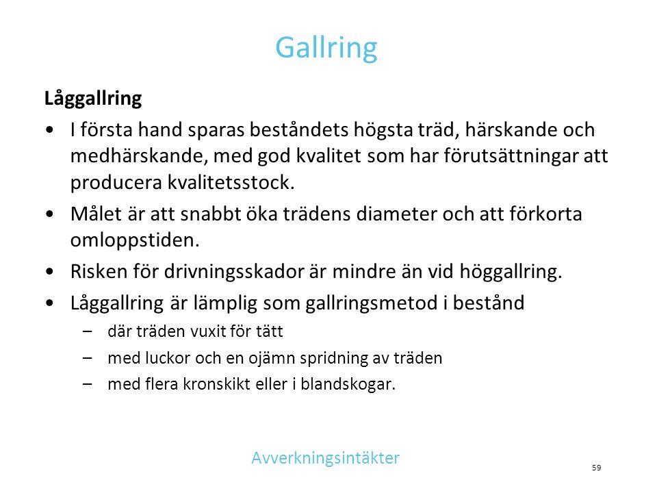Gallring Låggallring.