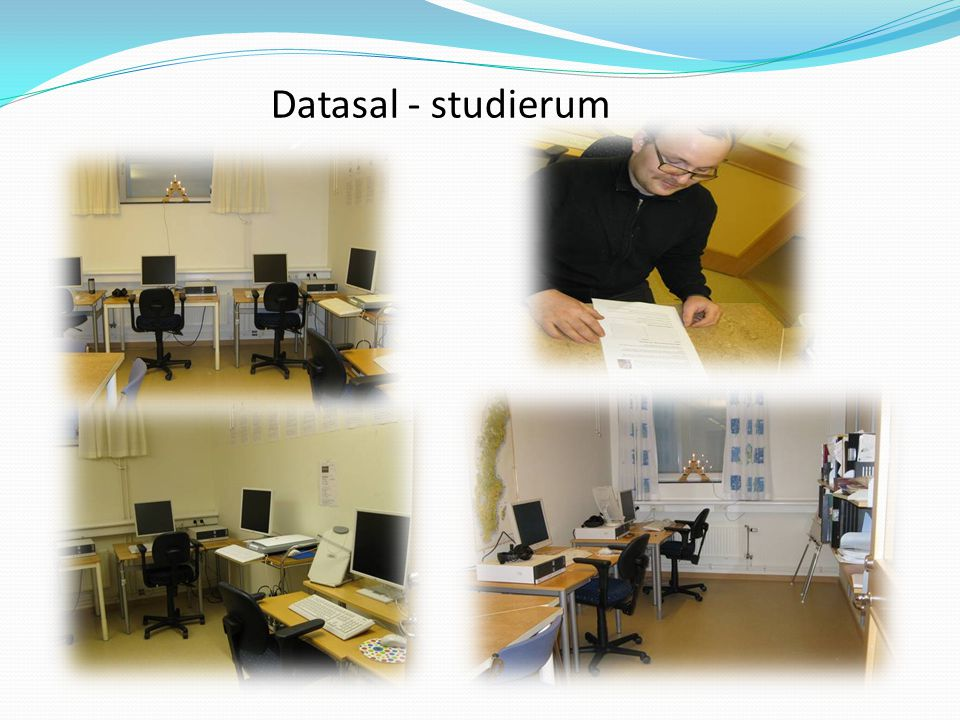 Datasal - studierum