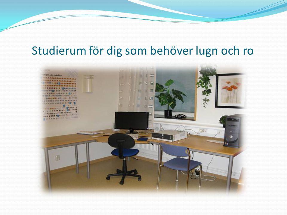 Studierum för dig som behöver lugn och ro