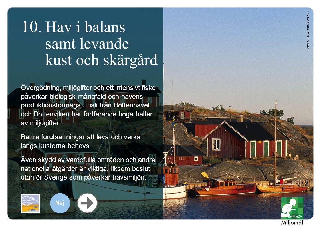 10. Hav i balans samt levande kust och skärgård