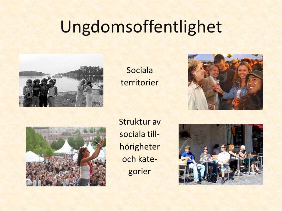 Ungdomsoffentlighet Sociala territorier Struktur av sociala till-