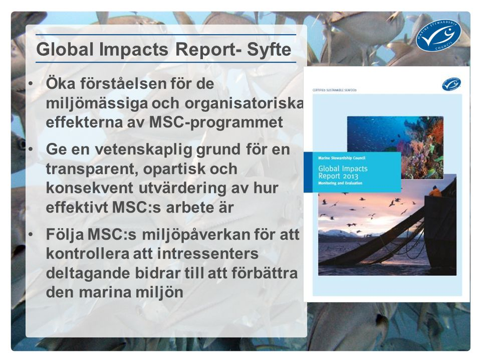 Global Impacts Report- Syfte
