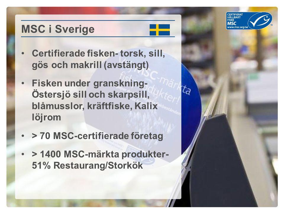 MSC i Sverige Certifierade fisken- torsk, sill, gös och makrill (avstängt)