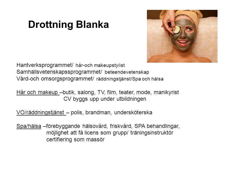 Drottning Blanka Hantverksprogrammet/ hår-och makeupstylist