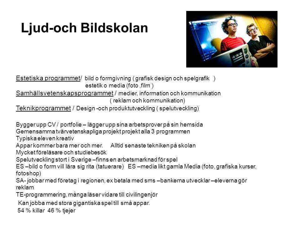 Ljud-och Bildskolan Estetiska programmet/ bild o formgivning ( grafisk design och spelgrafik ) estetik o media (foto ,film )