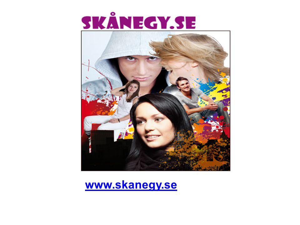 www.skanegy.se
