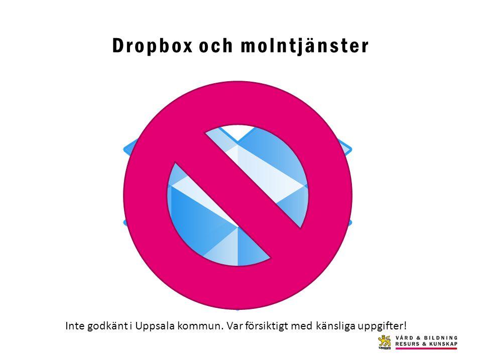 Dropbox och molntjänster