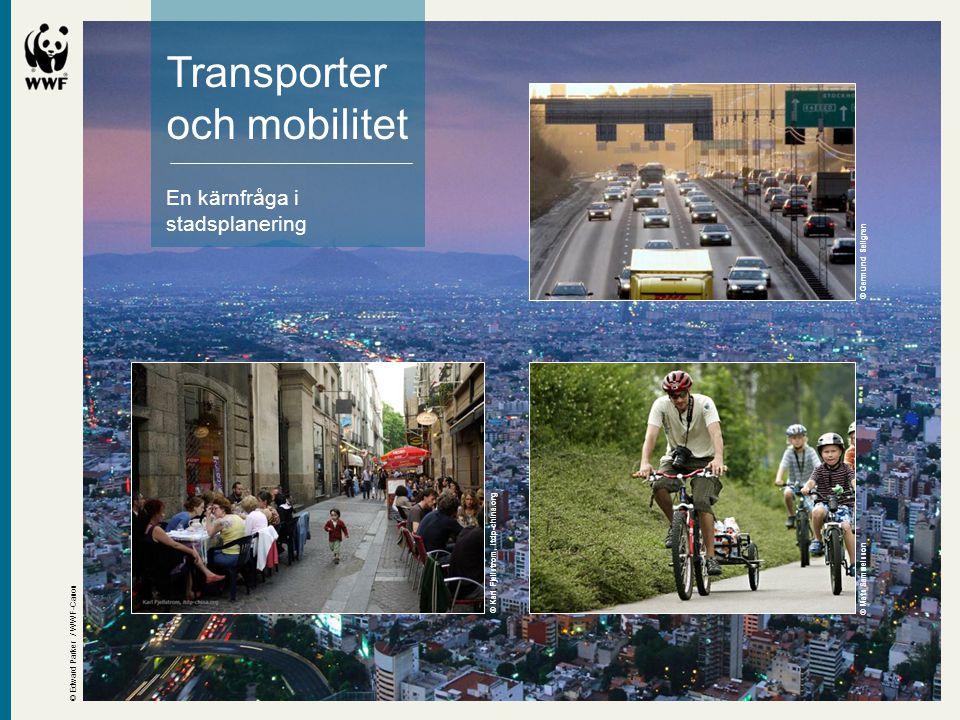 Transporter och mobilitet