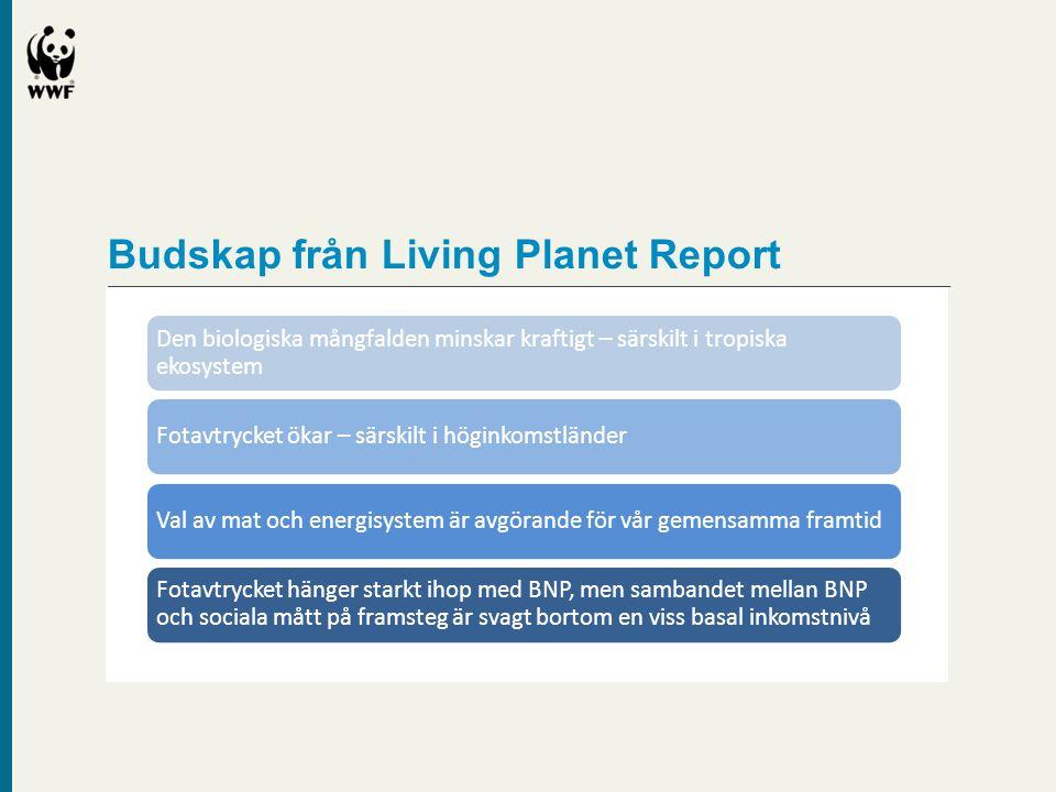 Budskap från Living Planet Report