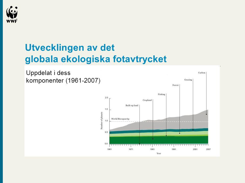globala ekologiska fotavtrycket