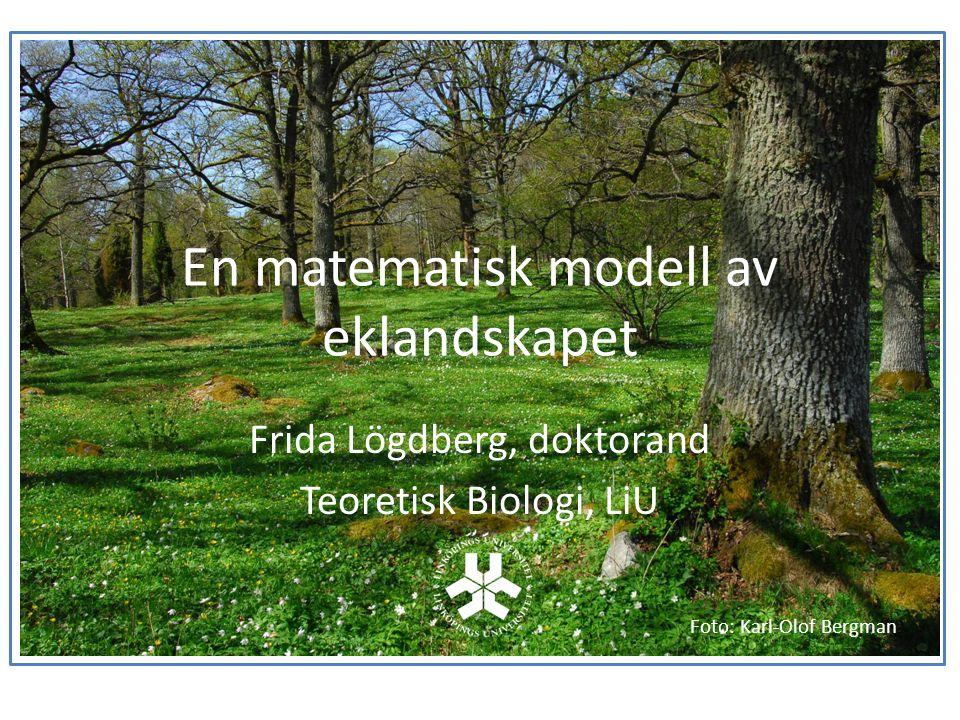 En matematisk modell av eklandskapet
