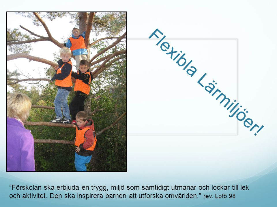 Flexibla Lärmiljöer! Förskolan ska erbjuda en trygg, miljö som samtidigt utmanar och lockar till lek.