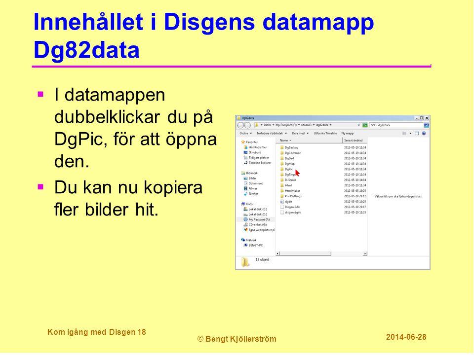 Innehållet i Disgens datamapp Dg82data