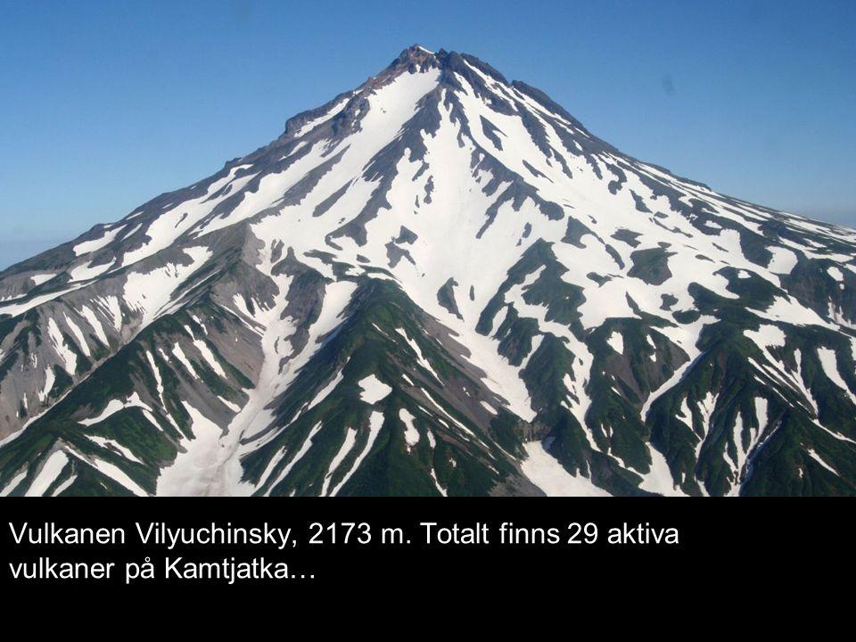 Vulkanen Vilyuchinsky, 2173 m