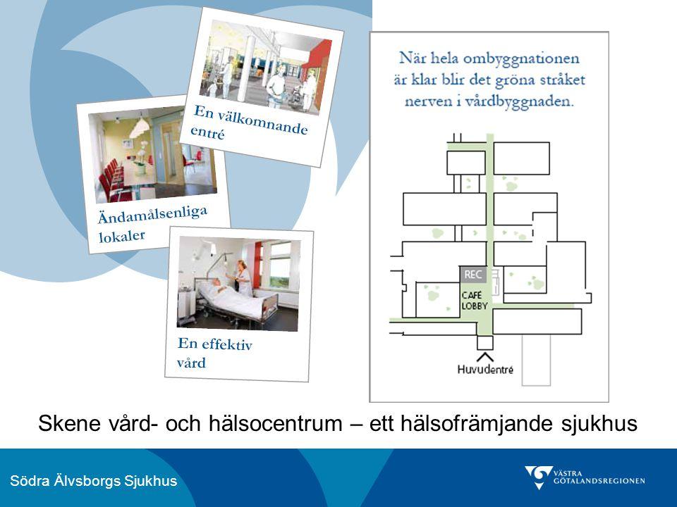 Skene vård- och hälsocentrum – ett hälsofrämjande sjukhus