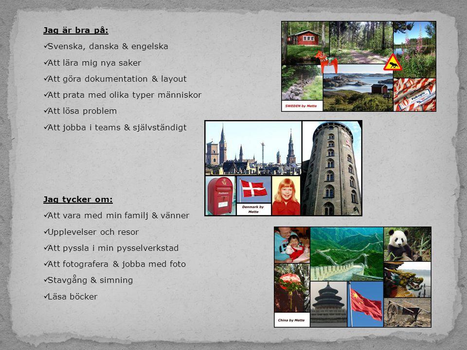 Jag är bra på: Svenska, danska & engelska. Att lära mig nya saker. Att göra dokumentation & layout.