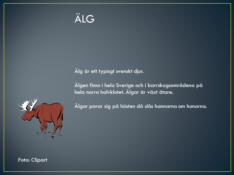 ÄLG Älg är ett typisgt svenskt djur.