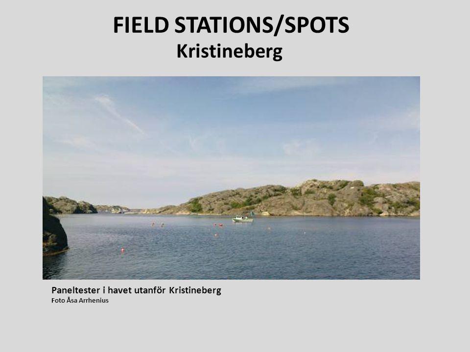 FIELD STATIONS/SPOTS Kristineberg