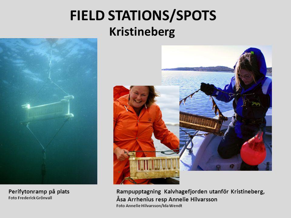 FIELD STATIONS/SPOTS Kristineberg Perifytonramp på plats
