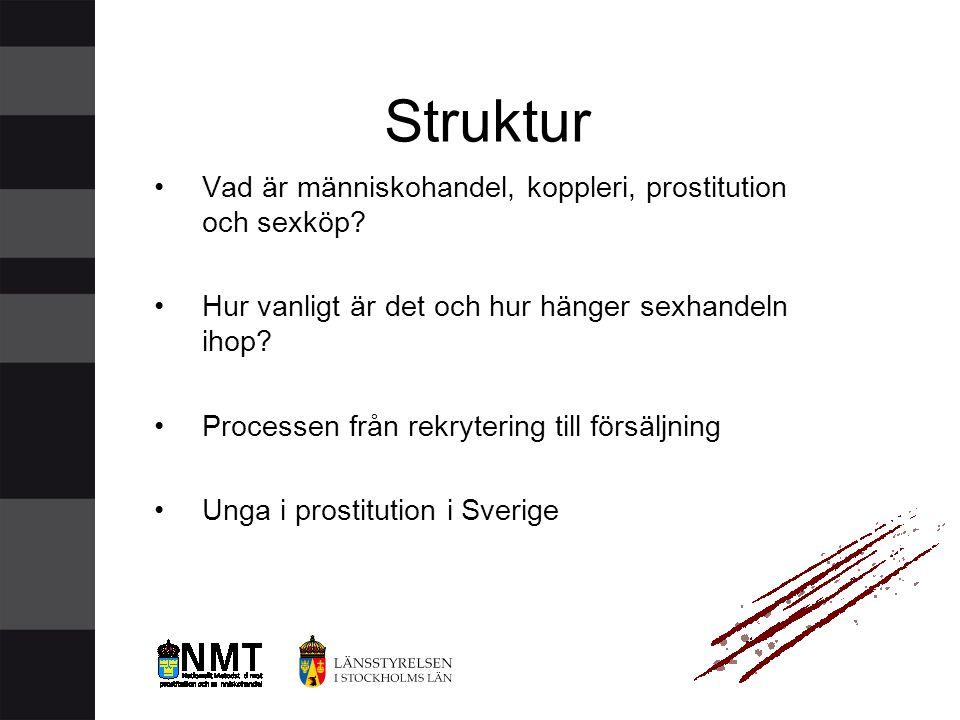 Struktur Vad är människohandel, koppleri, prostitution och sexköp