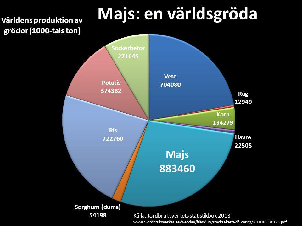 Majs: en världsgröda Källa: Jordbruksverkets statistikbok 2013 www2.jordbruksverket.se/webdav/files/SJV/trycksaker/Pdf_ovrigt/JO01BR1301v3.pdf.