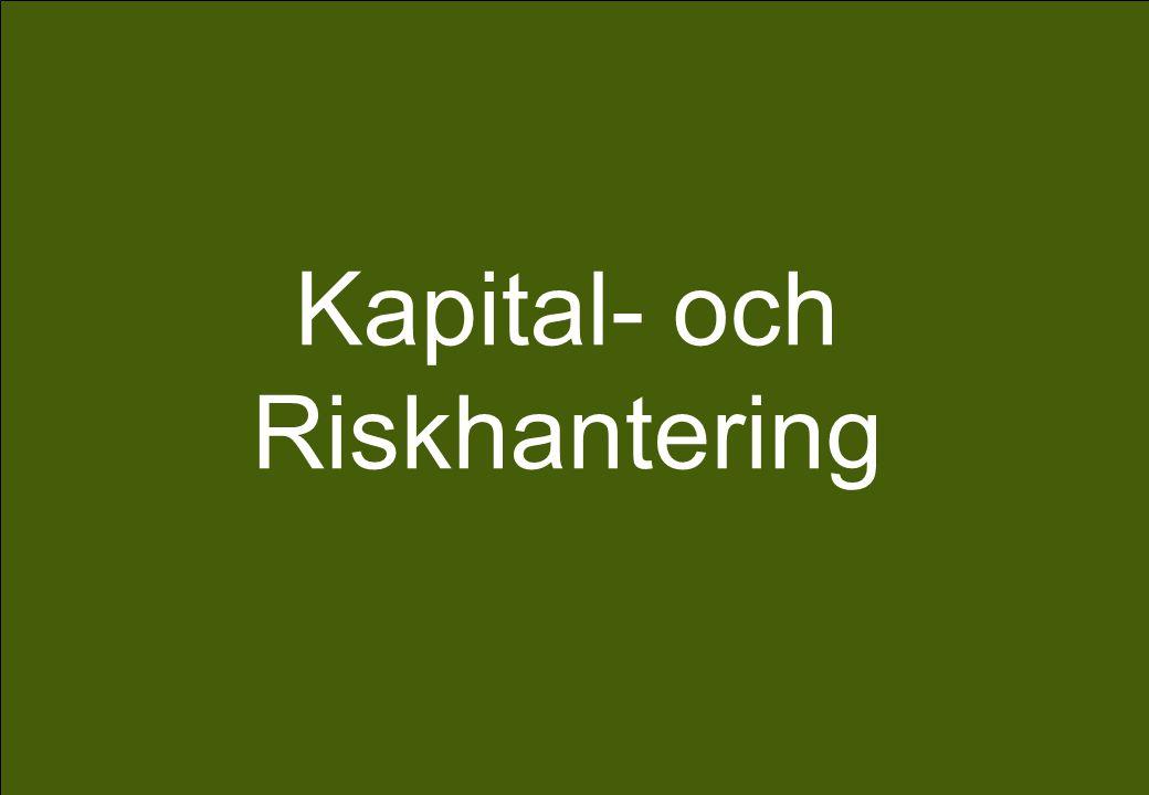 Kapital- och Riskhantering