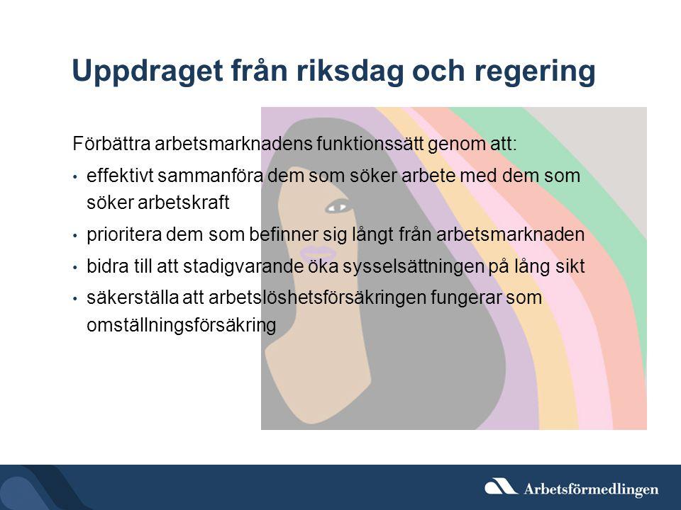 Uppdraget från riksdag och regering