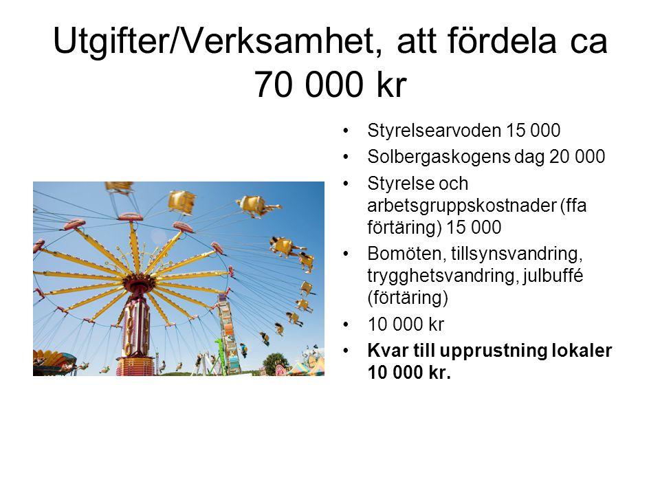 Utgifter/Verksamhet, att fördela ca 70 000 kr