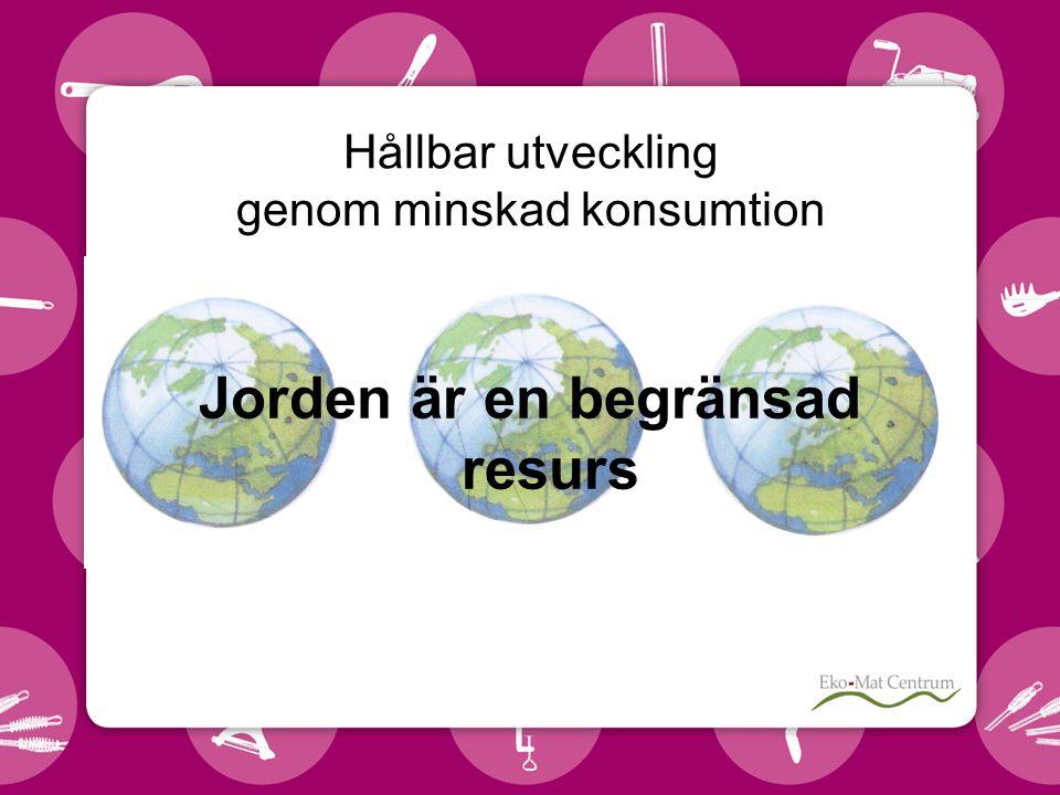 Hållbar utveckling genom minskad konsumtion