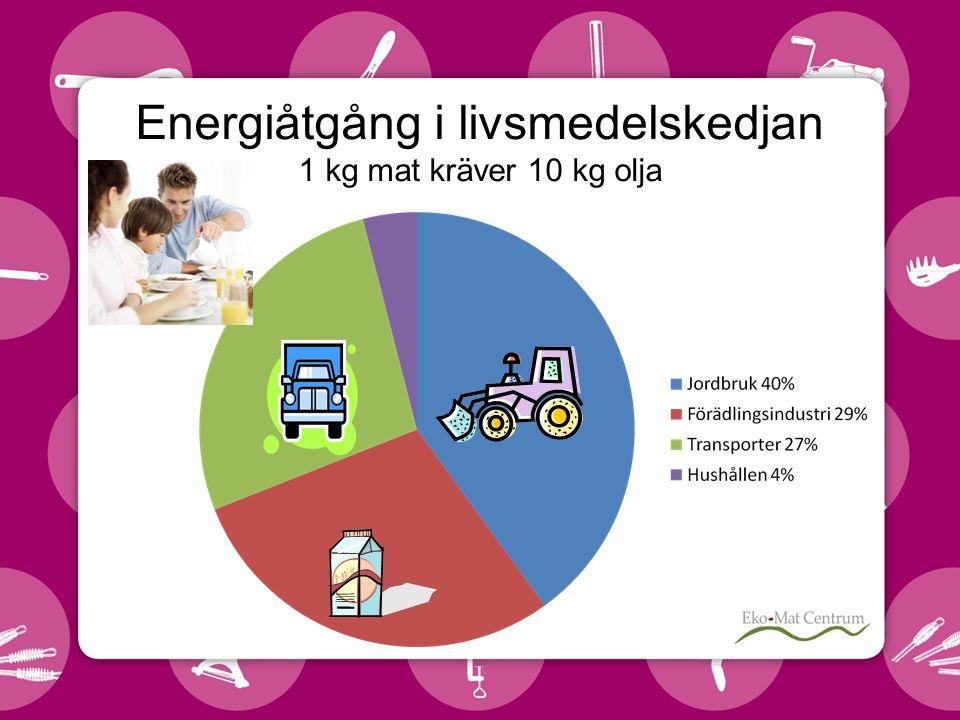 Energiåtgång i livsmedelskedjan 1 kg mat kräver 10 kg olja