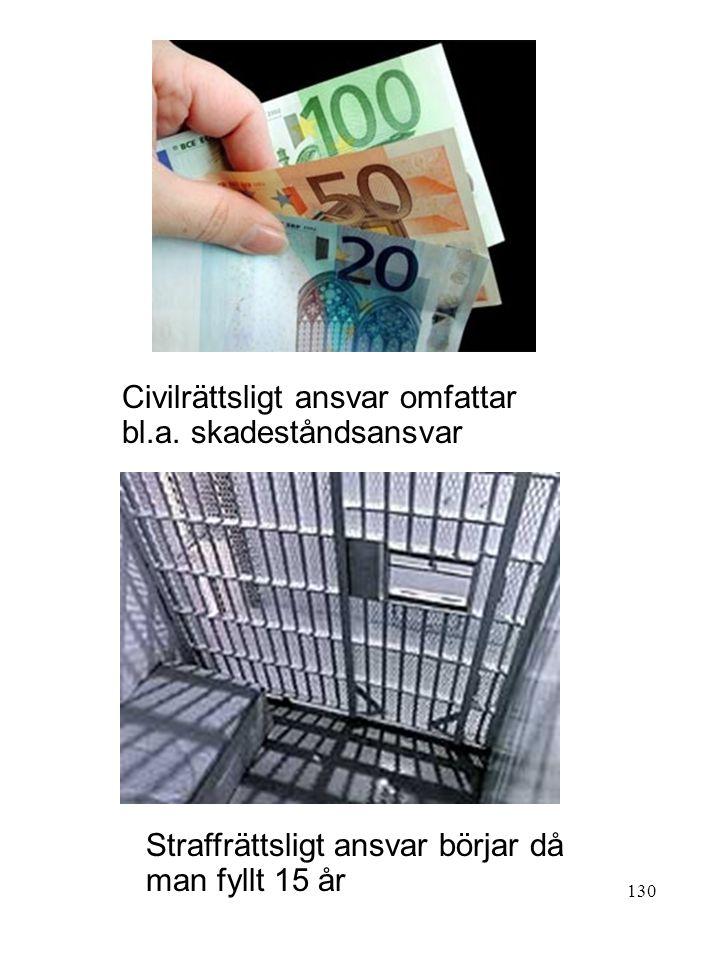 Civilrättsligt ansvar omfattar bl.a. skadeståndsansvar