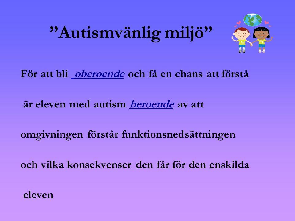 Autismvänlig miljö För att bli oberoende och få en chans att förstå