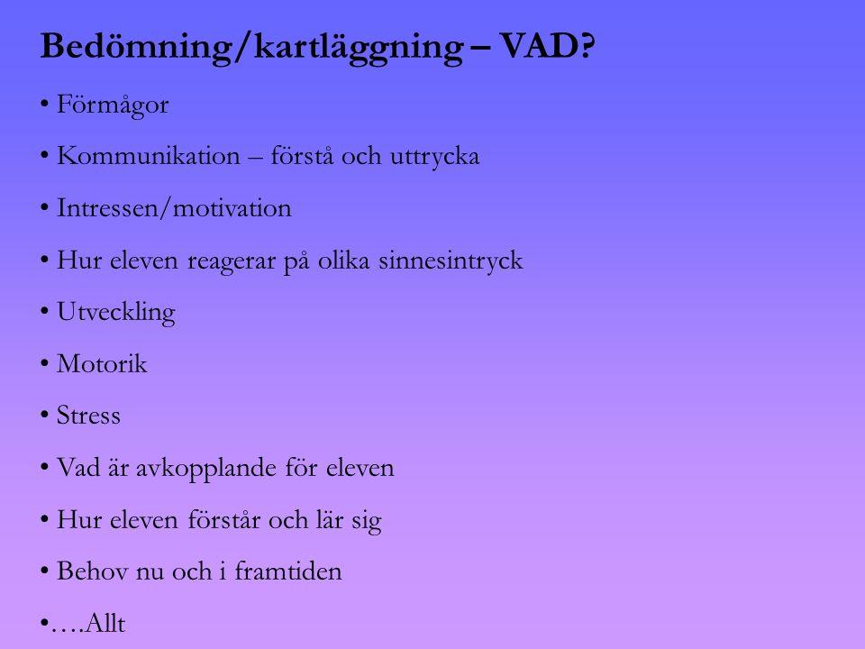 Bedömning/kartläggning – VAD