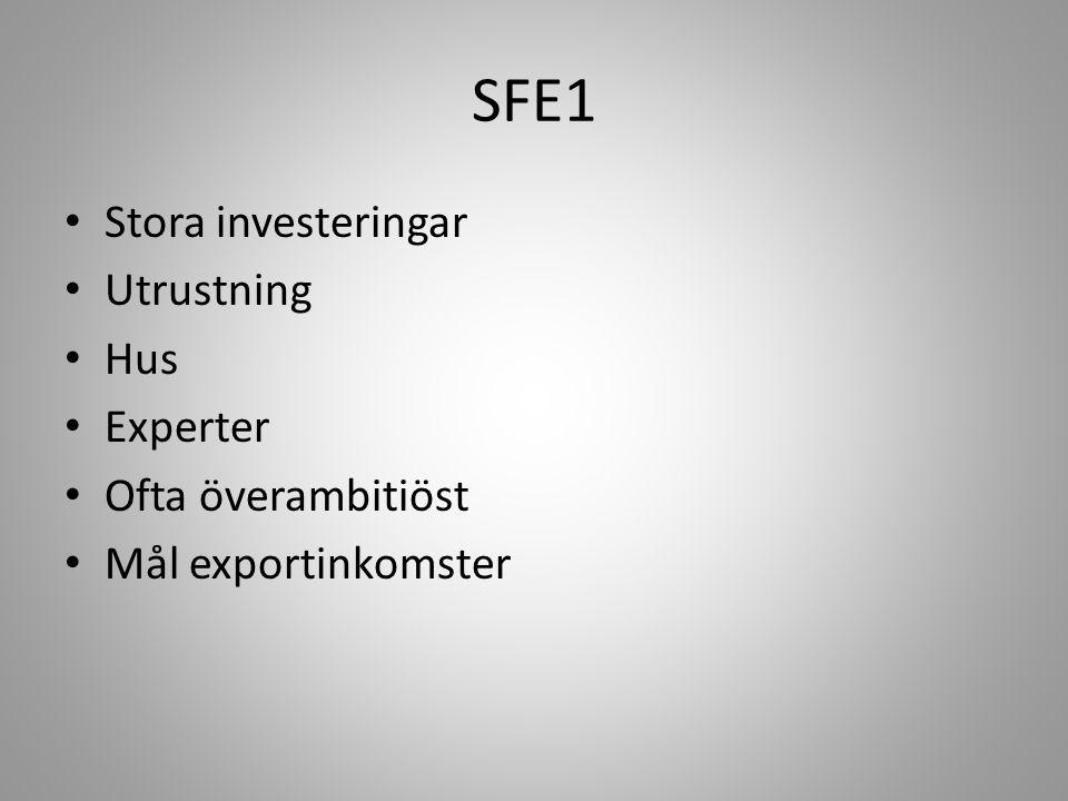 SFE1 Stora investeringar Utrustning Hus Experter Ofta överambitiöst