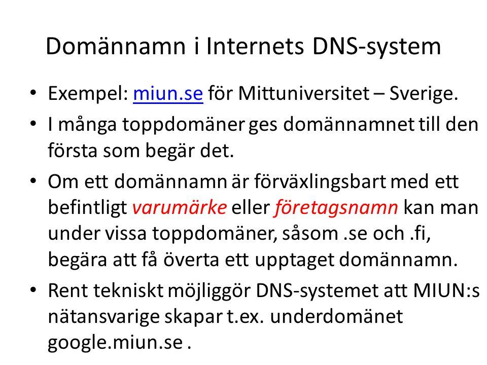 Domännamn i Internets DNS-system