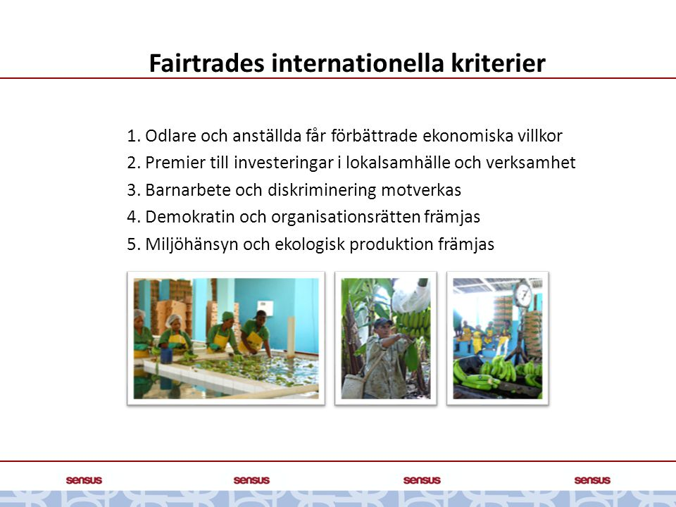 Fairtrades internationella kriterier