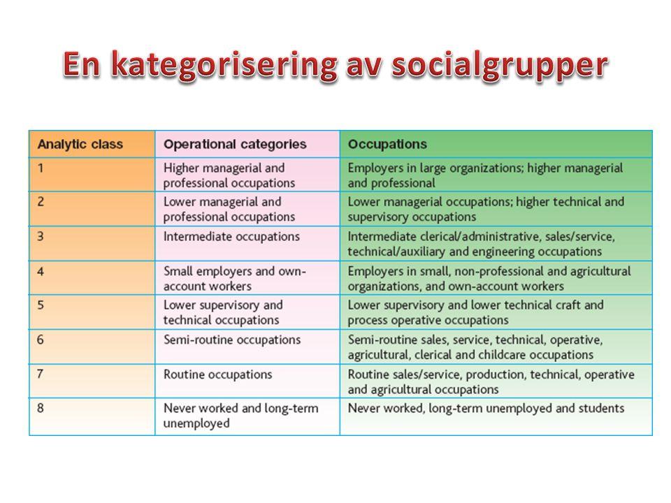 En kategorisering av socialgrupper