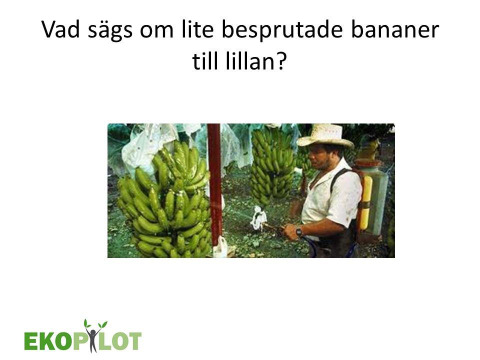 Vad sägs om lite besprutade bananer till lillan
