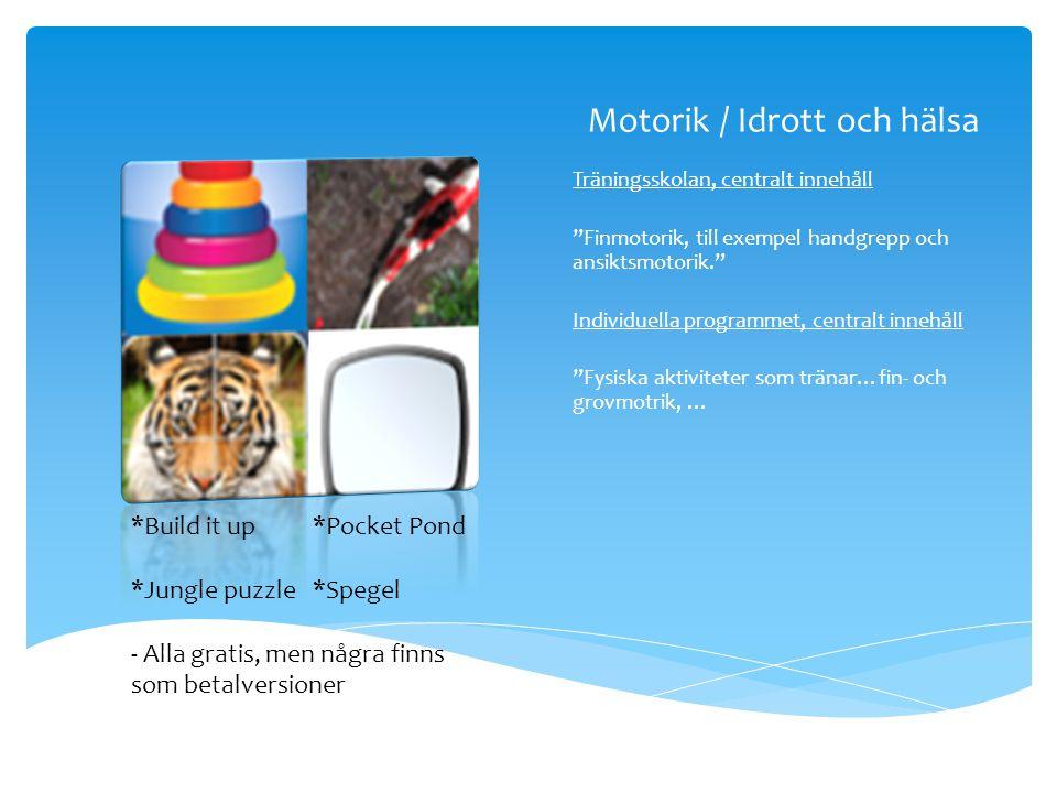 Motorik / Idrott och hälsa