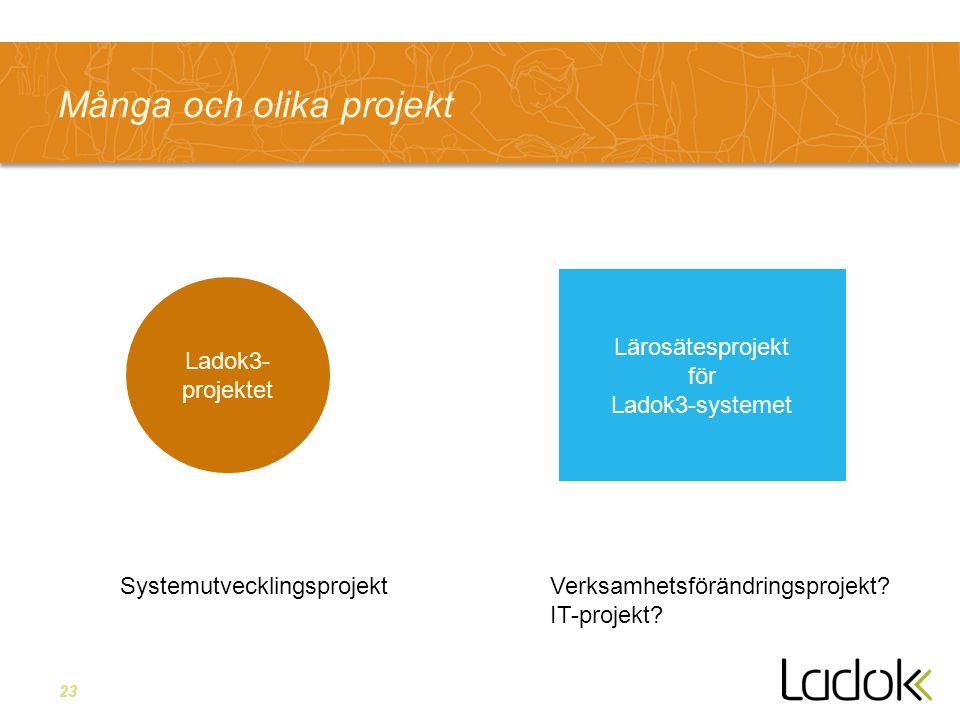 Många och olika projekt