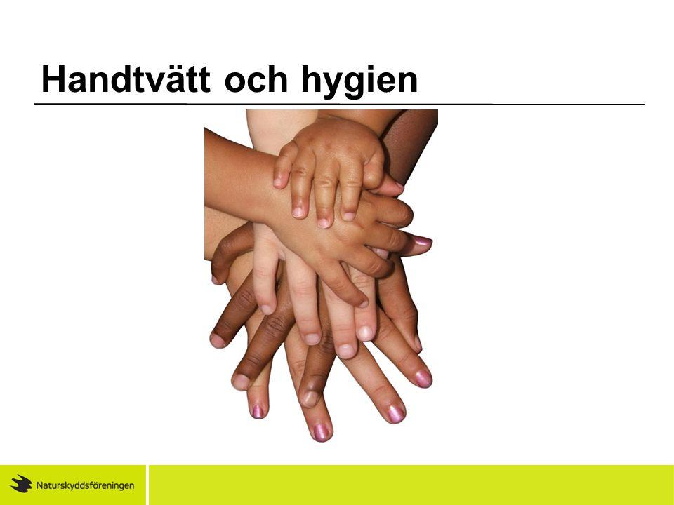 Handtvätt och hygien