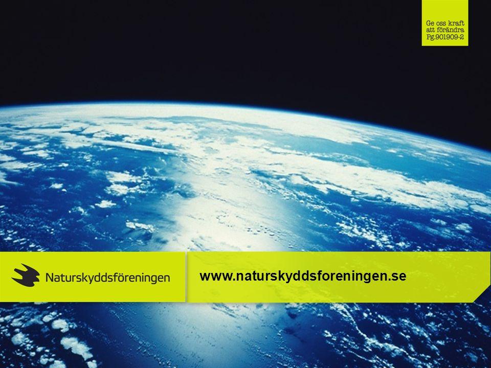 www.naturskyddsforeningen.se 38