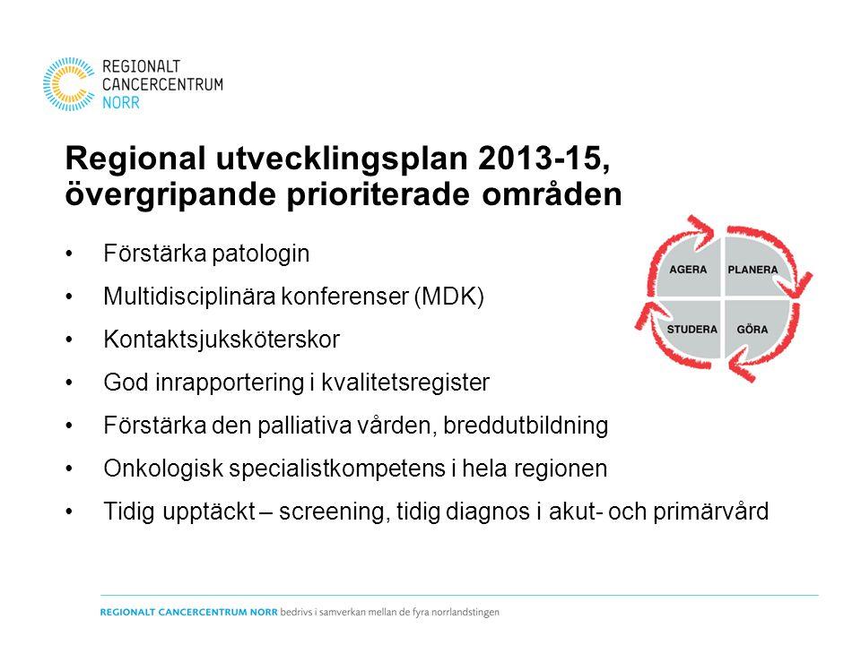 Regional utvecklingsplan 2013-15, övergripande prioriterade områden